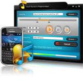 Blackberry Klingelton converter
