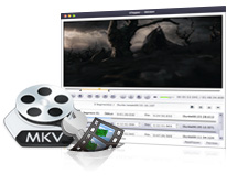 Blu-ray to MKV Ripper Mac