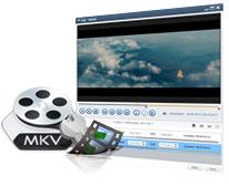 blu-ray für mkv converter
